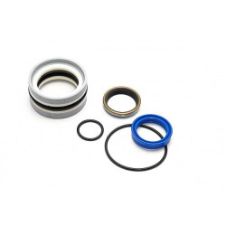 Gasket kit for grapple...